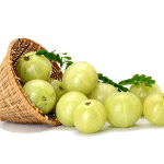 Benefits of Amla, Tulsi and Neem