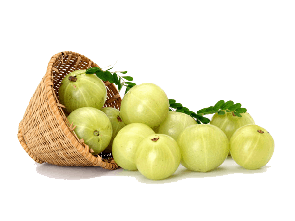 health benfits of amla
