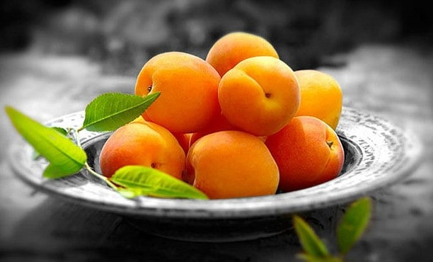 health benefits of apricot