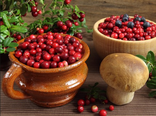 cranberry health benefits