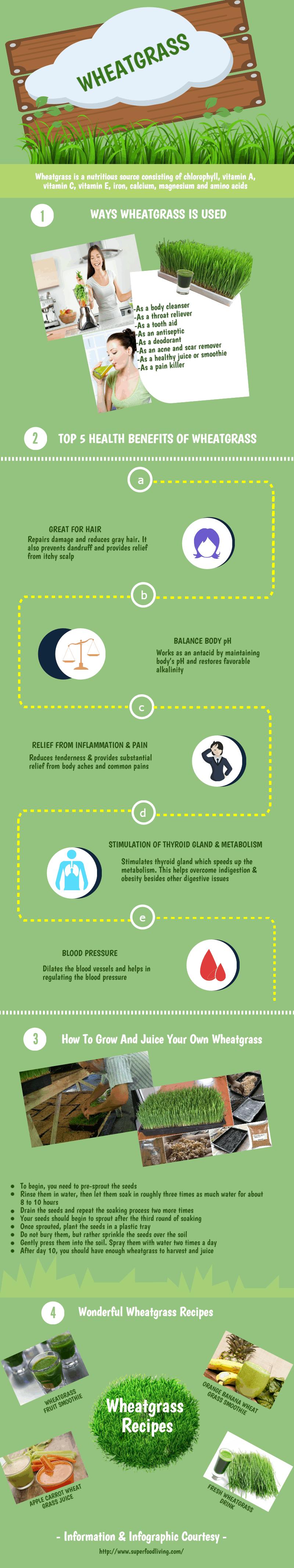 wheatgrass-Infographic-medictips-health-benefits