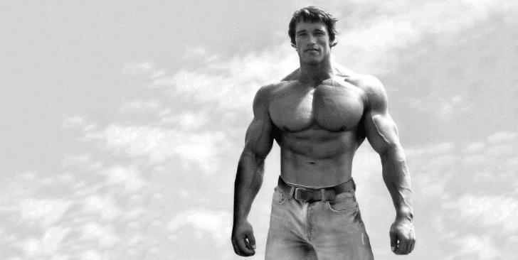 Arnold Schwarzenegger full body muscular pics