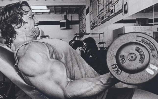 amazing old picture of arnold Schwarzenegger workout gym