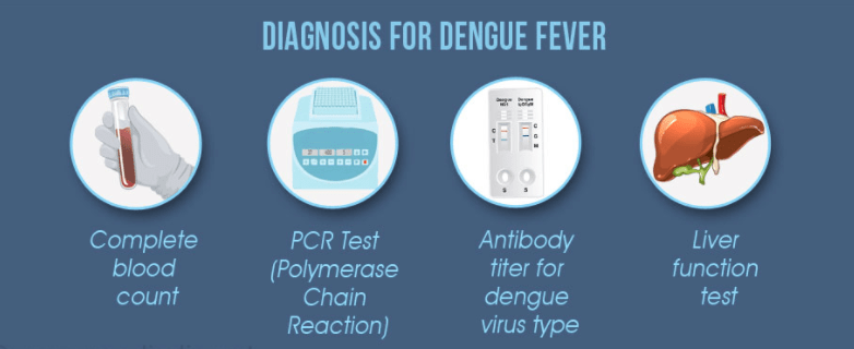 dengue fever diagnose tests