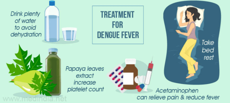 remedies for dengue fever